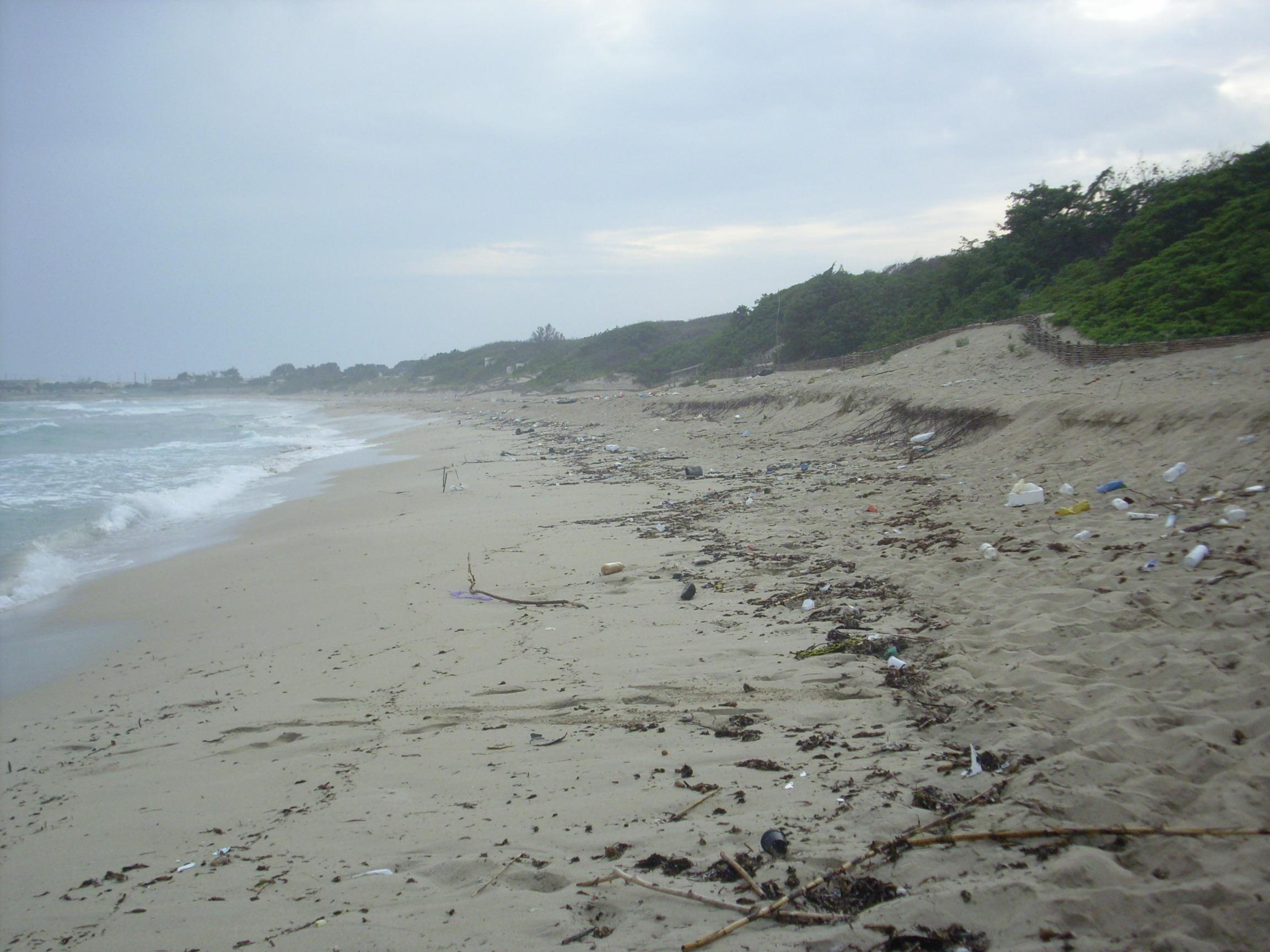 Spiaggia-sporca